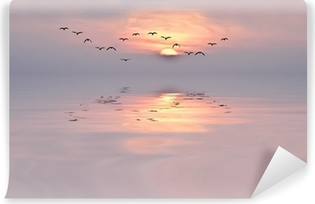 Samolepicí fototapeta Dawn of jemných barvách
