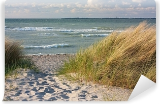 Samolepicí Fototapeta Dünenlandschaft am Strand der Ostsee bei Heiligenhafen