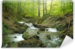 Samolepicí Fototapeta Lesní vodopád