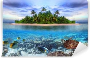 Samolepicí Fototapeta Mořský život na tropickém ostrově Maledivy