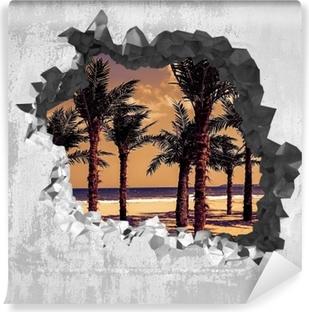 Samolepicí fototapeta Otvor ve zdi - Palma