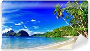 Samolepicí Fototapeta Panoramatický krásná pláž scenérie - El-nido, Palawan