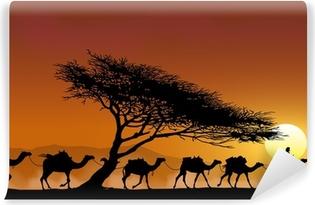 Selbstklebende Fototapete Caravane et arbre au couchant