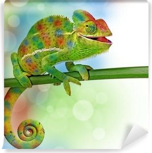 Selbstklebende Fototapete Chamäleon und Farben