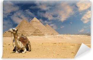 Selbstklebende Fototapete Die Pyramiden Kamel