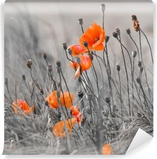Selbstklebende Fototapete Mohnblumen mit grauem Hintergrund