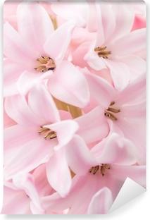 Selbstklebende Fototapete Pink hyacinth