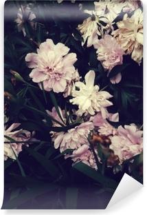 Selbstklebende Fototapete Rosa Peones