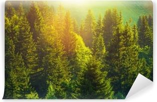 Selbstklebende Fototapete Sommer im Alpenwald