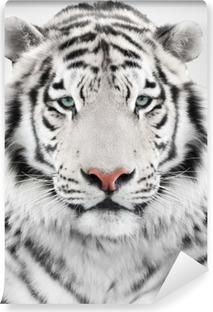 Selbstklebende Fototapete Weiße tiger