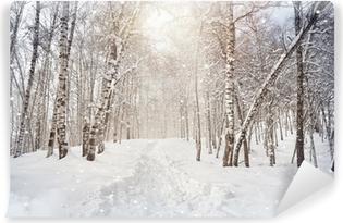 Selbstklebende Fototapete Winter-Birkenholz