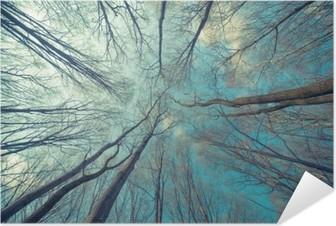 Selbstklebendes Poster Bäume Web-Hintergrund