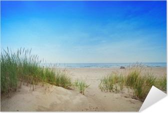 Selbstklebendes Poster Calm Strand mit Dünen und grüne Gras. Ruhige Meer