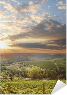 Selbstklebendes Poster Chianti Weinberg Landschaft in der Toskana, Italien