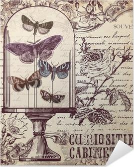 Selbstklebendes Poster Die Kuriositäten-Kabinett
