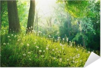 Selbstklebendes Poster Frühling Natur. Schöne Landschaft. Grünes Gras und Bäume