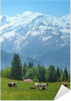 Selbstklebendes Poster Herde Kühe auf der Lichtung und Mont-Blanc-Massiv Blick
