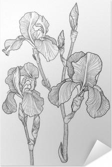 Selbstklebendes Poster Skizze des Blumenstraußes der blühenden Iris