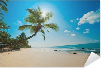Selbstklebendes Poster Tropenstrand in der Sonne