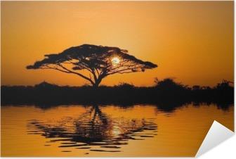 acacia tree at sunrise Self-Adhesive Poster