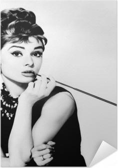Audrey Hepburn Self-Adhesive Poster