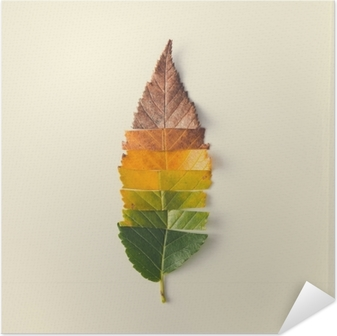 Creative layout of colorful autumn leaves. Self-Adhesive Poster
