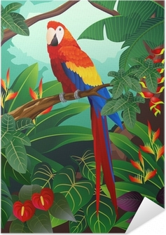 Detailed macaw bird vector Self-Adhesive Poster