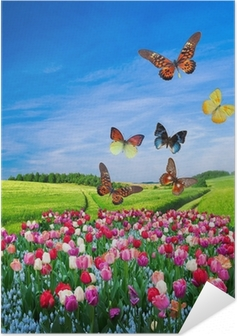 Field of colorful flowers and a butterfly group Self-Adhesive Poster