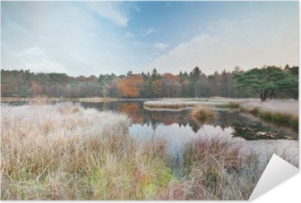 frosty morning on lake in autumn Self-Adhesive Poster