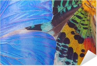 Multicolored butterflies wing Self-Adhesive Poster