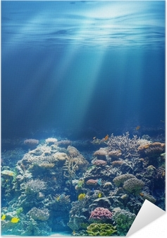 Sea or ocean underwater coral reef Self-Adhesive Poster