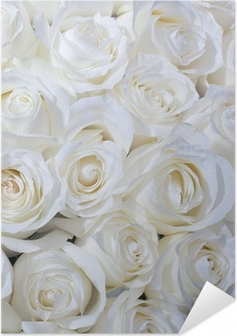 White roses background Self-Adhesive Poster