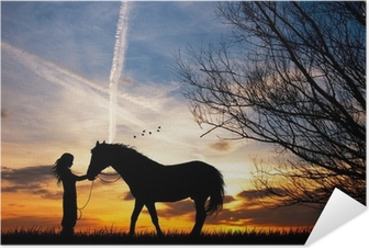 woman and horse Self-Adhesive Poster