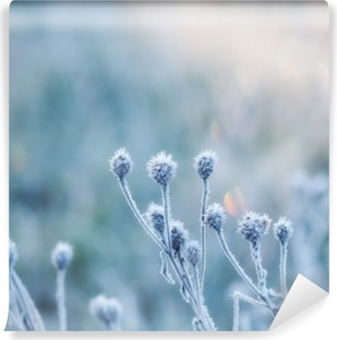 abstract natural background from frozen plant covered with hoarfrost or rime Self-Adhesive Wall Mural