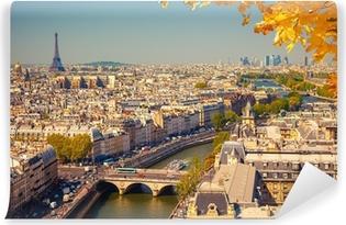 Aerial view of Paris Self-Adhesive Wall Mural