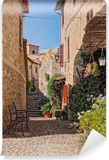 alley with flowers of a small town in Umbria, Italy Self-Adhesive Wall Mural