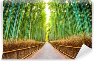 Bamboo Forest in Japan Self-Adhesive Wall Mural