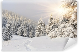 Beautiful winter landscape in the mountains Self-Adhesive Wall Mural