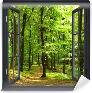 Black window open - Beech forest in the summer Self-Adhesive Wall Mural