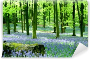bluebells at micheldever Self-Adhesive Wall Mural