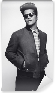Bruno Mars Self-Adhesive Wall Mural