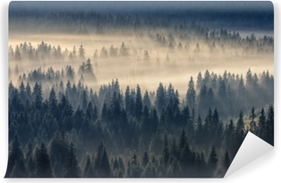 Coniferous forest in the foggy mountains Self-Adhesive Wall Mural