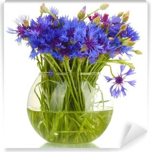 cornflowers in glass vase isolated on white Self-Adhesive Wall Mural