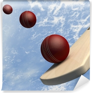 Cricket Bat With Ball Flight Path Self-Adhesive Wall Mural
