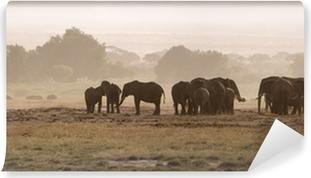 Elephants, Amboseli National Park Self-Adhesive Wall Mural