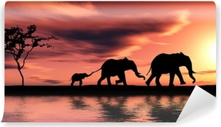Family of elephants. Self-Adhesive Wall Mural