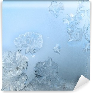 Frosty pattern at a winter window glass Self-Adhesive Wall Mural