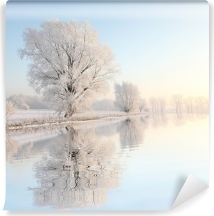 Frosty winter tree against a blue sky with reflection in water Self-Adhesive Wall Mural
