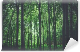 Green Forest Background Self-Adhesive Wall Mural
