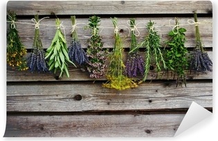 Herbs drying on the wooden barn in the garden Self-Adhesive Wall Mural